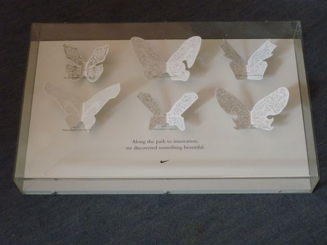 Butterfly display case made from clear cast and white acrylic and foamex foam PVC